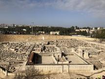 1780 Dead Sea Scrolls-2019