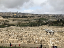 1960 Jewish Cemetary from Mount of Olives-2019