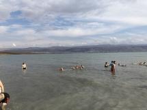 2426 Dead Sea Israel-2019