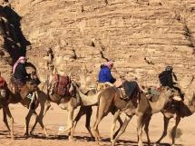 2994 Wadi Rum Desert Jordan-2019