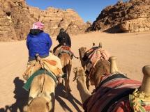 3022 Wadi Rum Desert Jordan-2019